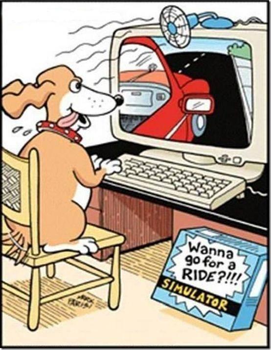 simulador_de_auto_para_perros